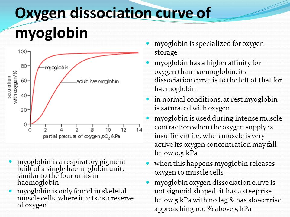 Oxygen dissociation curve of myoglobin