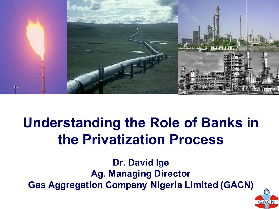 Understanding the Role of Banks in the Privatization Process Dr