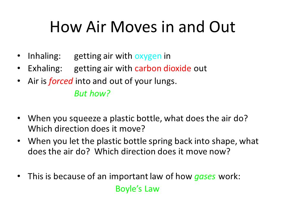 How Air Moves in and Out Inhaling: getting air with oxygen in