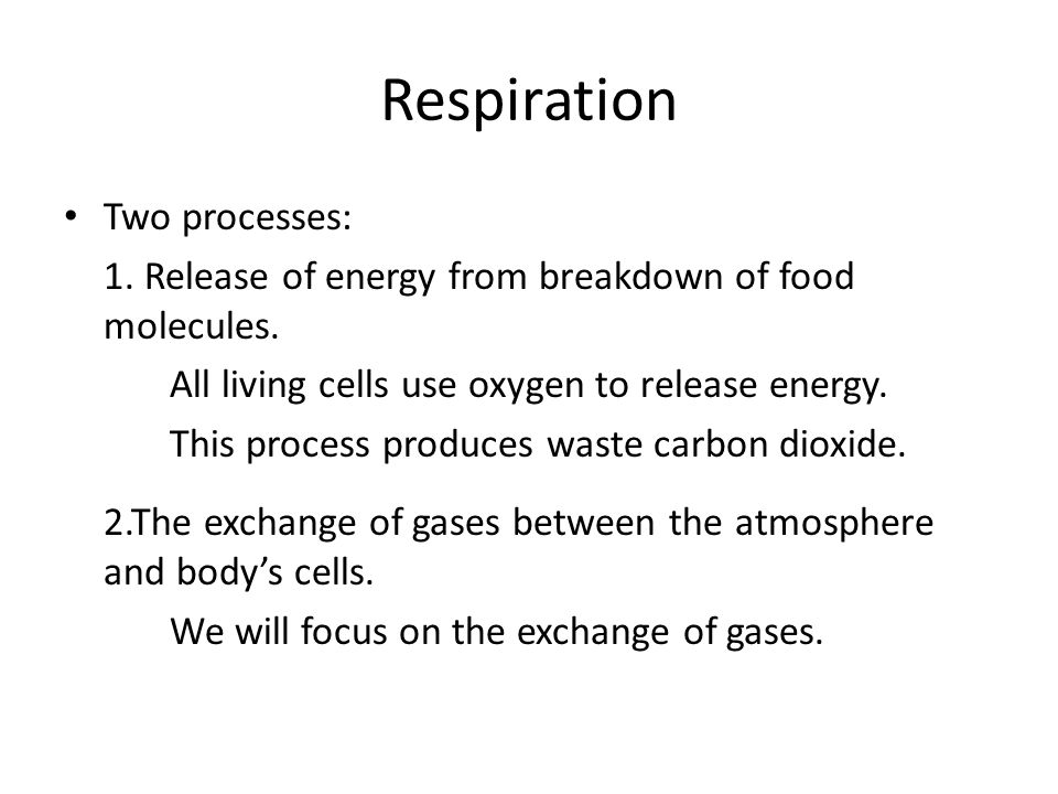 Respiration Two processes: