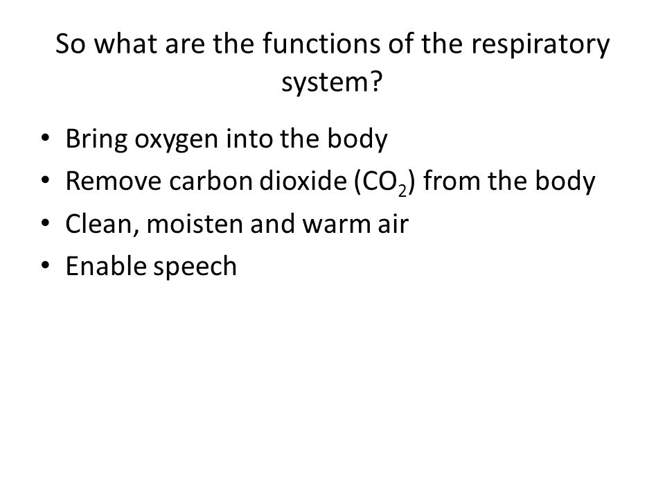 So what are the functions of the respiratory system