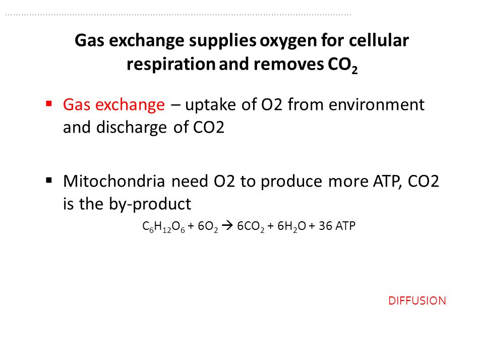 Gas exchange supplies oxygen for cellular respiration and removes CO2