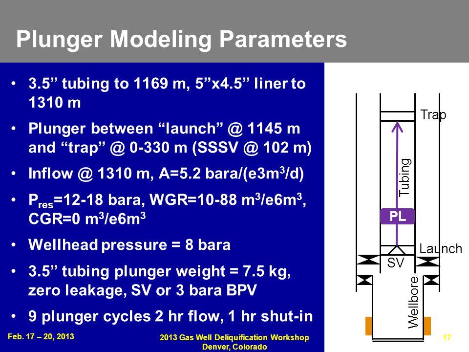 Plunger Modeling Parameters