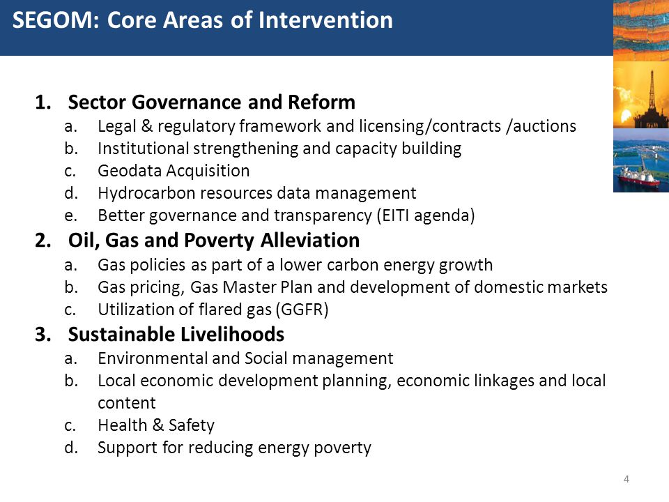 SEGOM: Core Areas of Intervention
