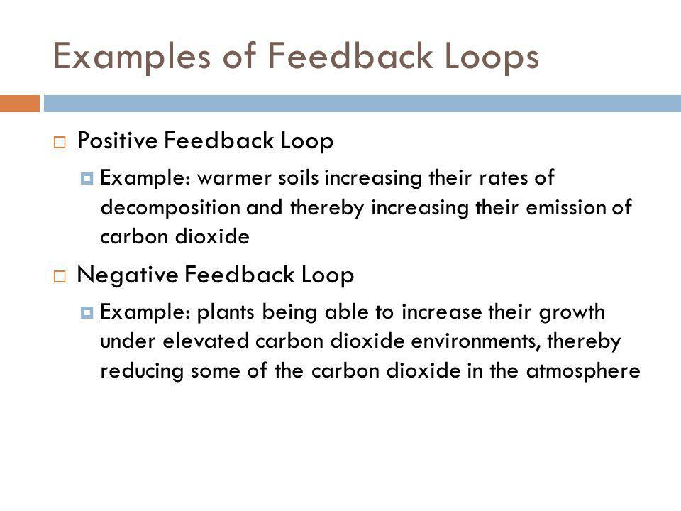 Examples of Feedback Loops