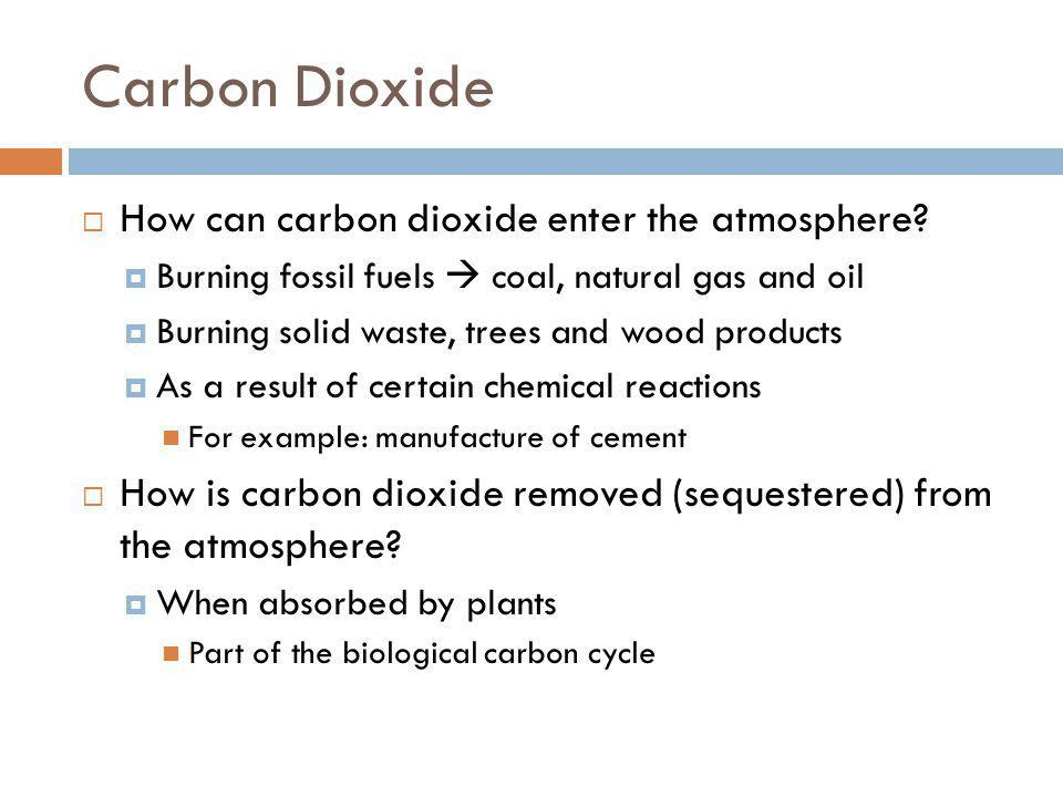 Carbon Dioxide How can carbon dioxide enter the atmosphere