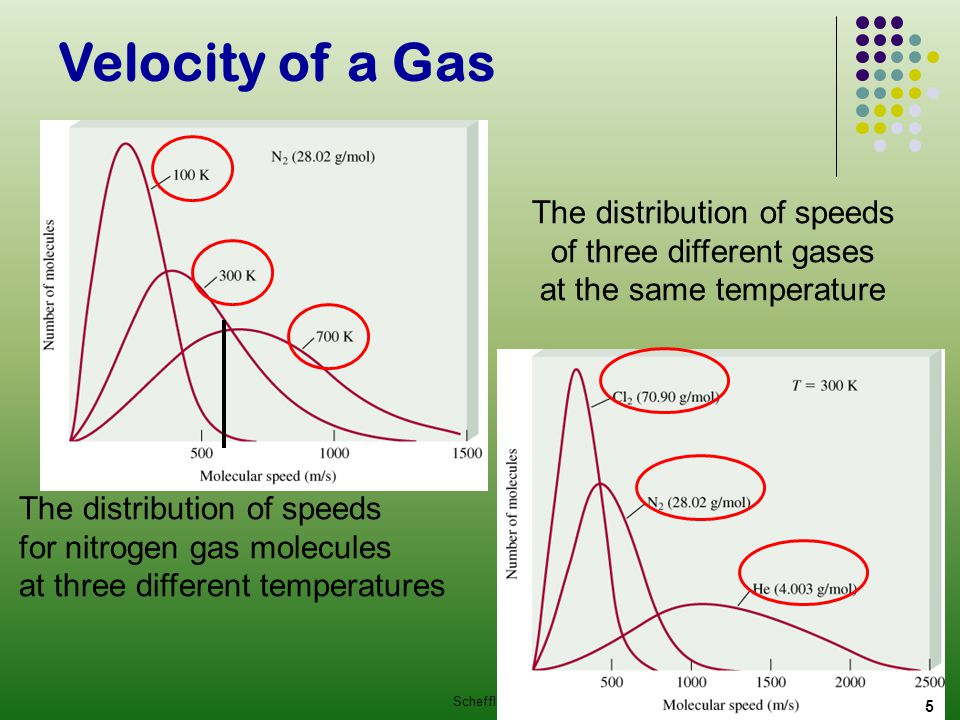 Velocity of a Gas The distribution of speeds of three different gases