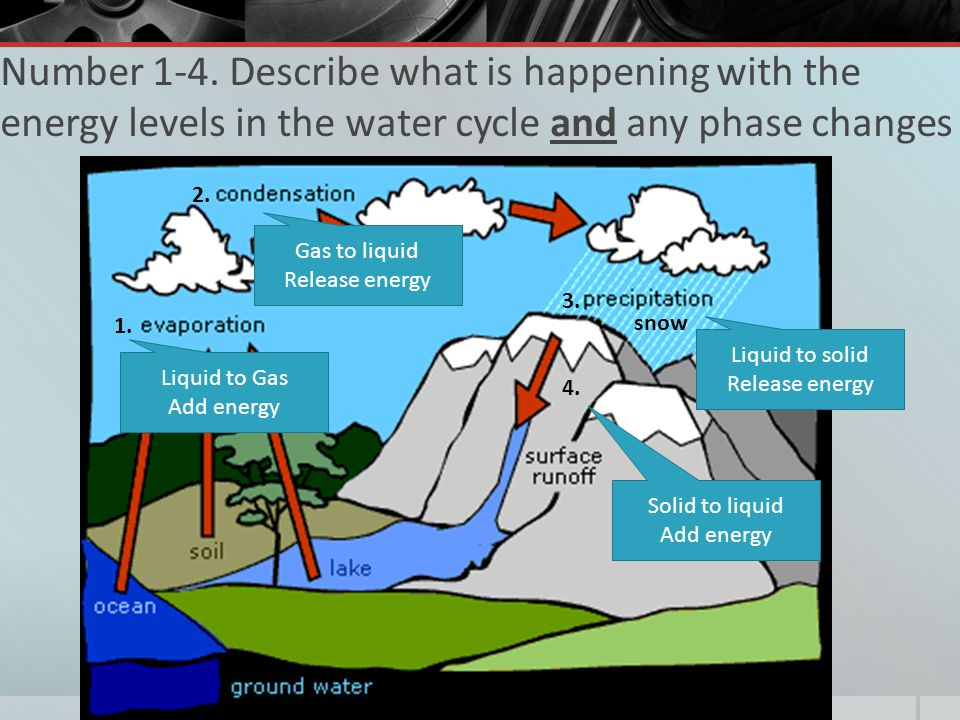 Number 1-4. Describe what is happening with the energy levels in the water cycle and any phase changes