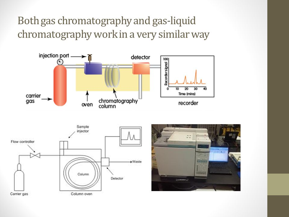 Both gas chromatography and gas-liquid chromatography work in a very similar way