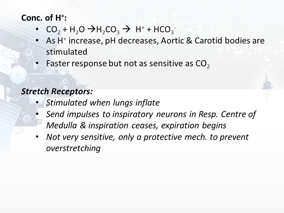 Conc. of H+: CO2 + H2O H2CO3  H+ + HCO3- As H+ increase, pH decreases, Aortic & Carotid bodies are stimulated.