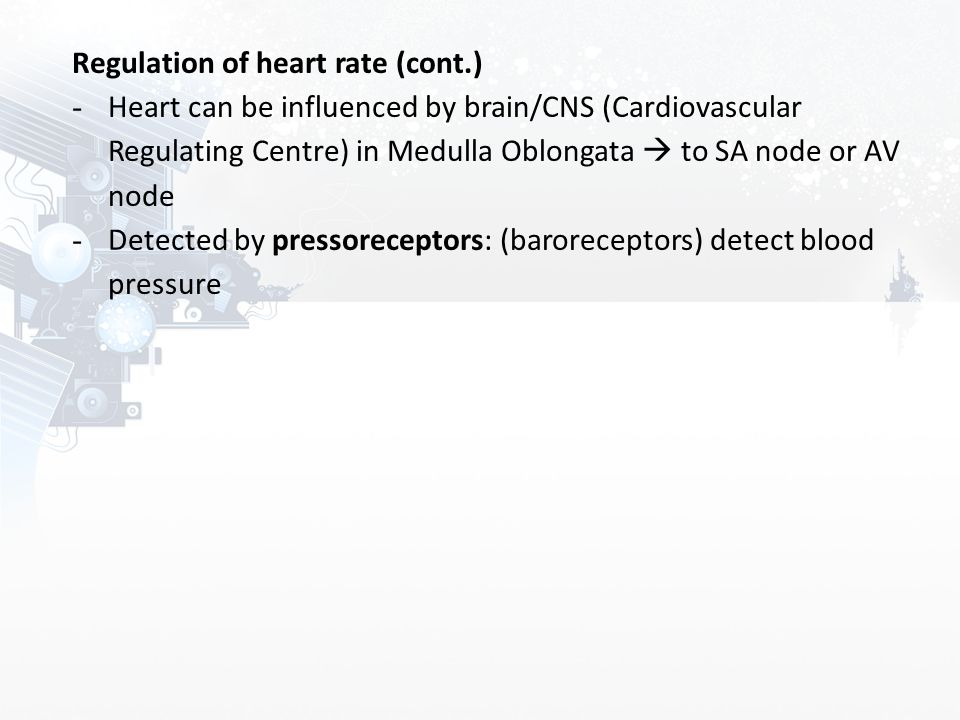 Regulation of heart rate (cont.)