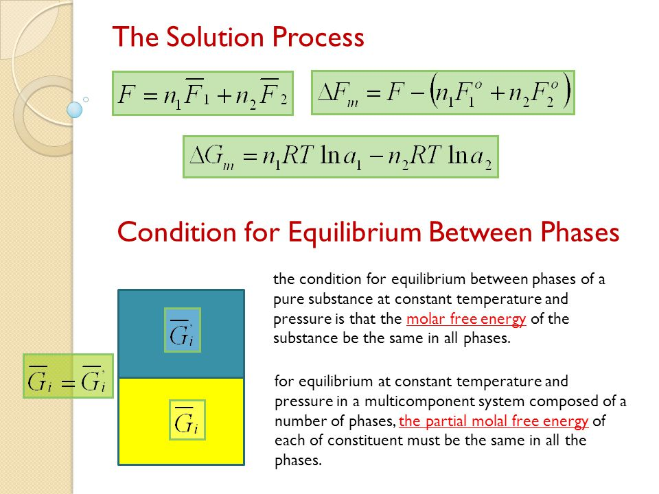 Condition for Equilibrium Between Phases