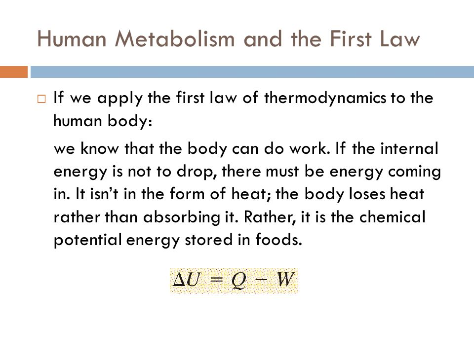 Human Metabolism and the First Law