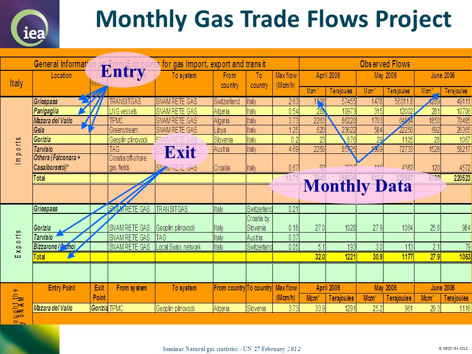 Monthly Gas Trade Flows Project