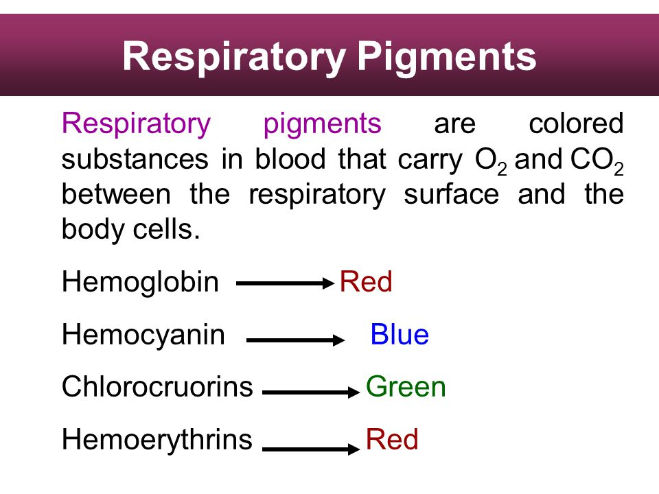 Respiratory Pigments Respiratory pigments are colored substances in blood that carry O2 and CO2 between the respiratory surface and the body cells.