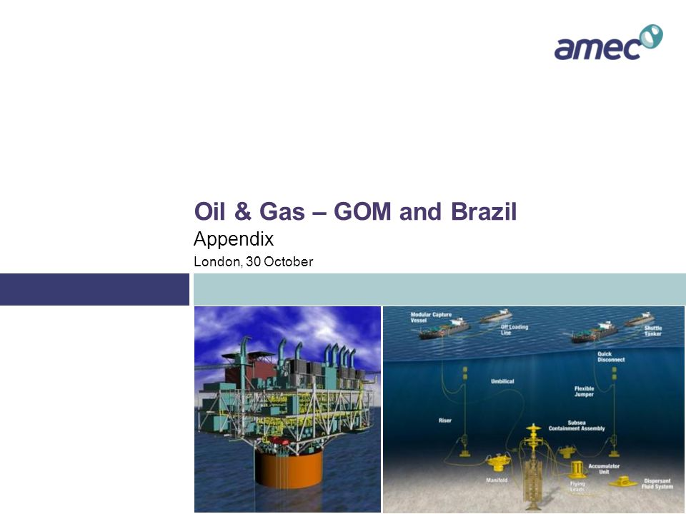 Appendix – GOM and Brazil Project history