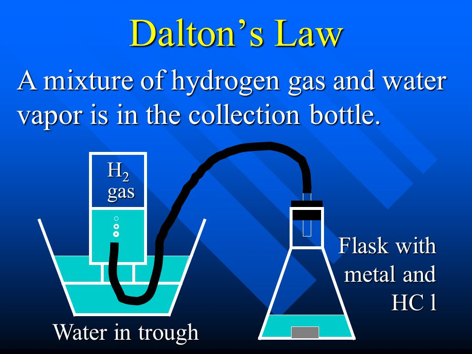 Dalton's Law A mixture of hydrogen gas and water vapor is in the collection bottle. H2 gas. Flask with metal and HC l.