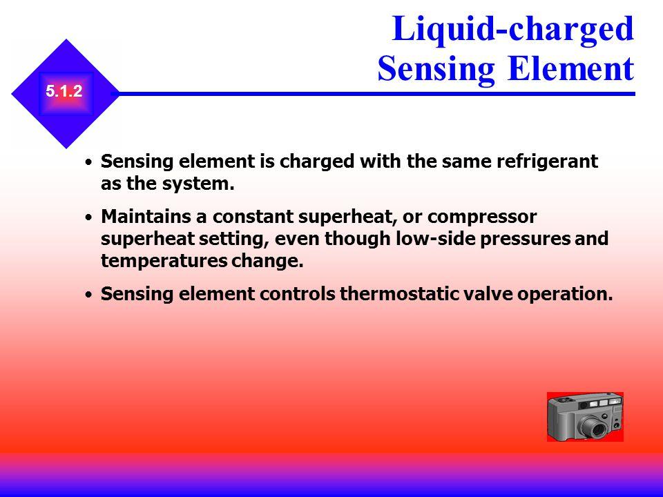 Liquid-charged Sensing Element