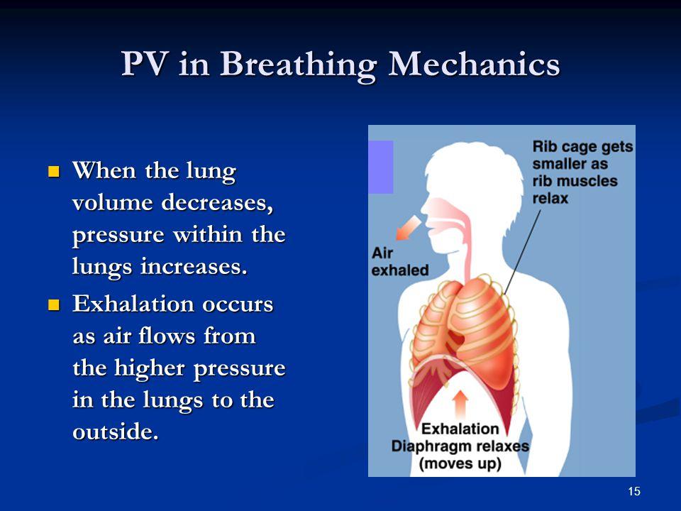 PV in Breathing Mechanics