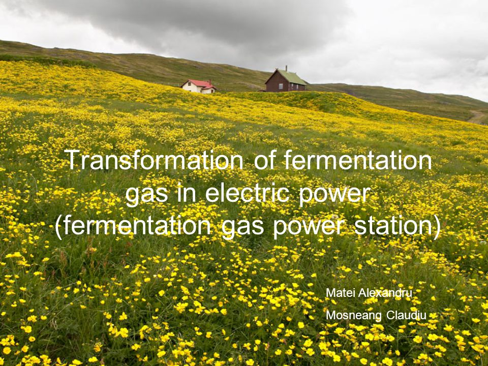 Transformation of fermentation gas in electric power (fermentation gas power station)