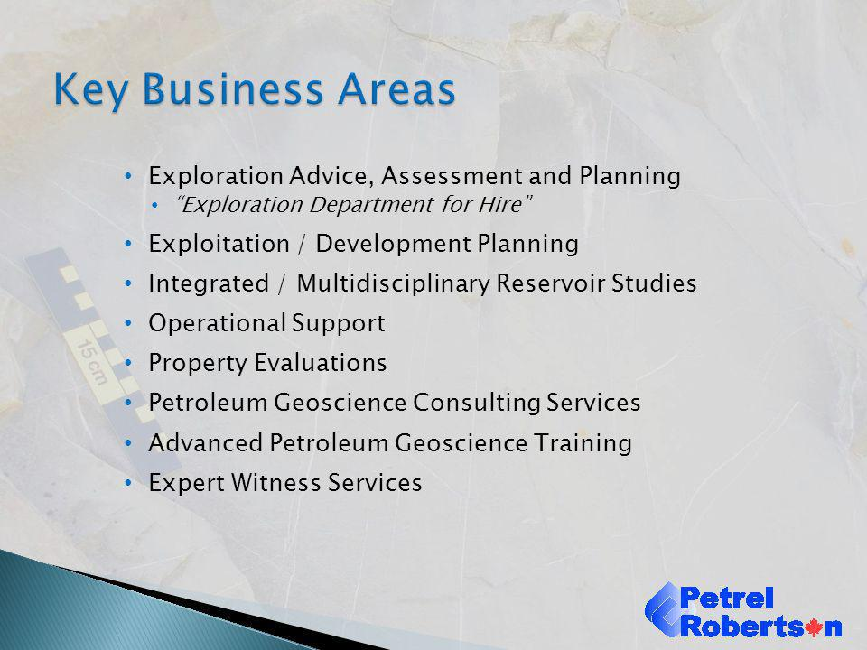 Key Business Areas Exploration Advice, Assessment and Planning