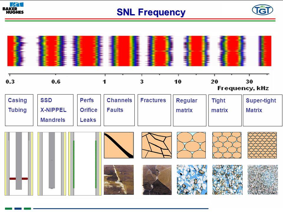 SNL Frequency Casing Tubing SSD X-NIPPEL Mandrels Perfs Orifice Leaks