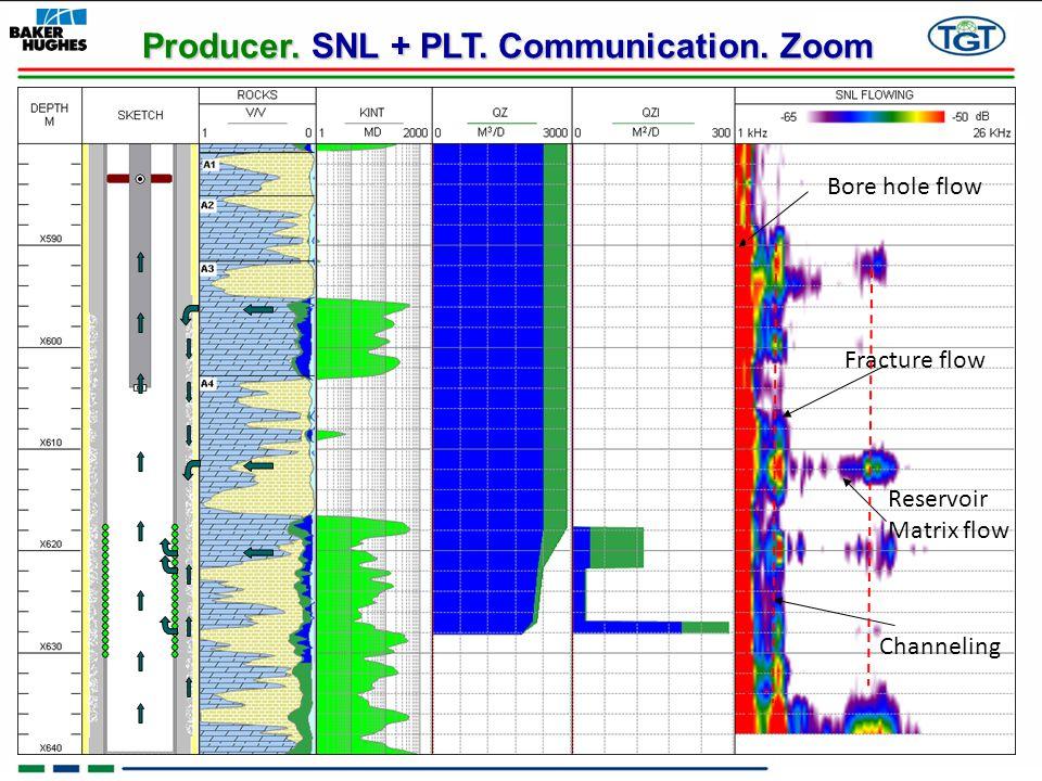 Producer. SNL + PLT. Communication. Zoom