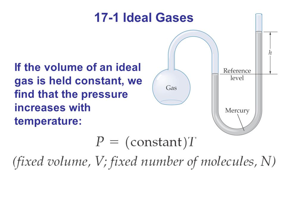 17-1 Ideal Gases If the volume of an ideal gas is held constant, we find that the pressure increases with temperature: