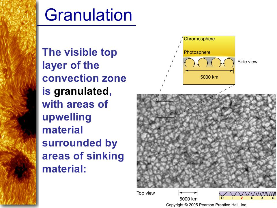 Granulation The visible top layer of the convection zone is granulated, with areas of upwelling material surrounded by areas of sinking material: