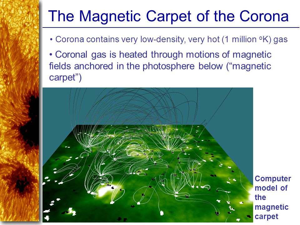The Magnetic Carpet of the Corona