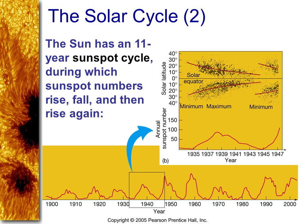 The Solar Cycle (2) The Sun has an 11-year sunspot cycle, during which sunspot numbers rise, fall, and then rise again: