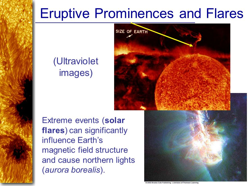 Eruptive Prominences and Flares