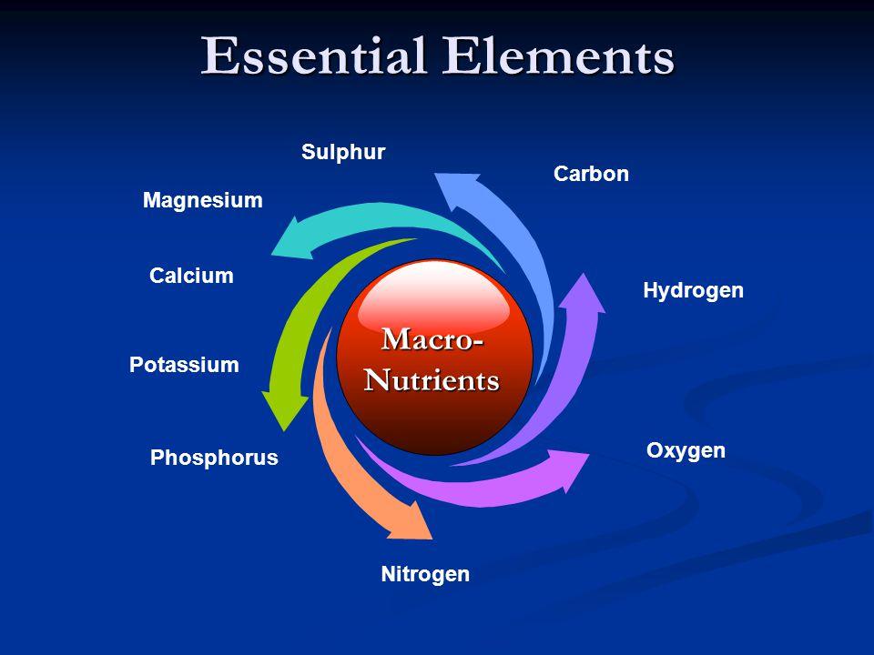 Essential Elements Macro- Nutrients Sulphur Carbon Magnesium Calcium