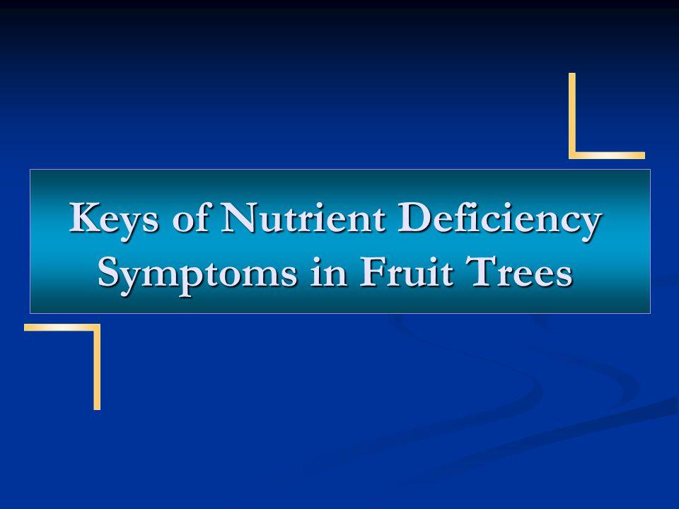 Keys of Nutrient Deficiency Symptoms in Fruit Trees