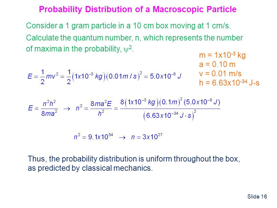 Probability Distribution of a Macroscopic Particle