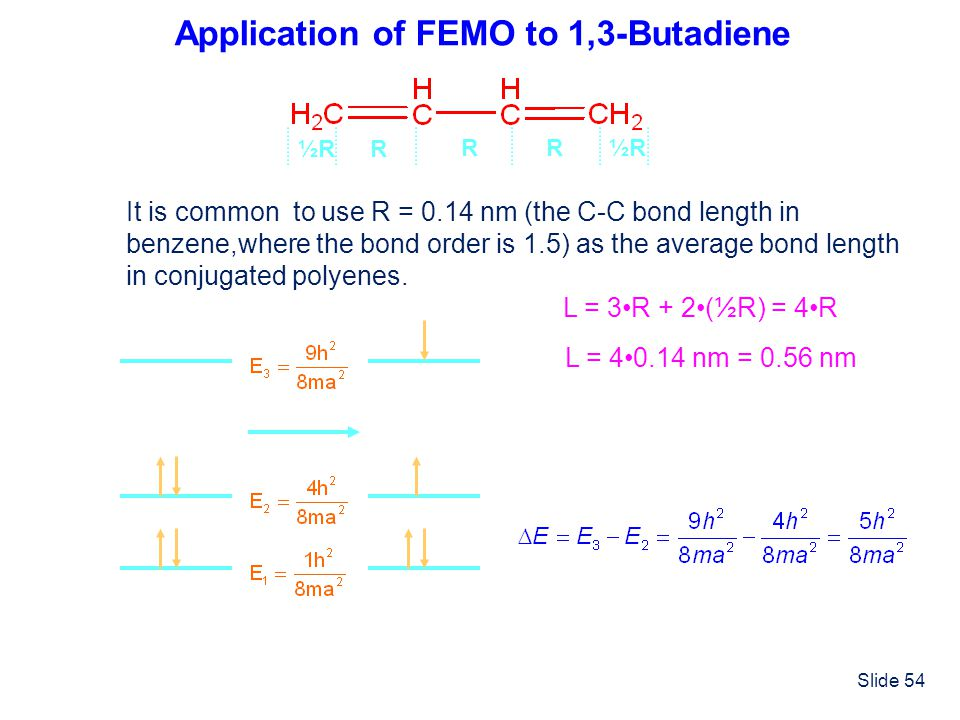 Application of FEMO to 1,3-Butadiene