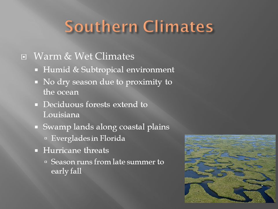 Southern Climates Warm & Wet Climates Humid & Subtropical environment