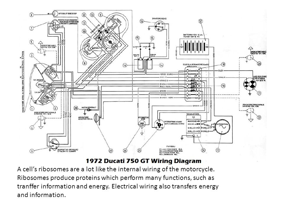 bmw r65 motorcycle wiring diagrams