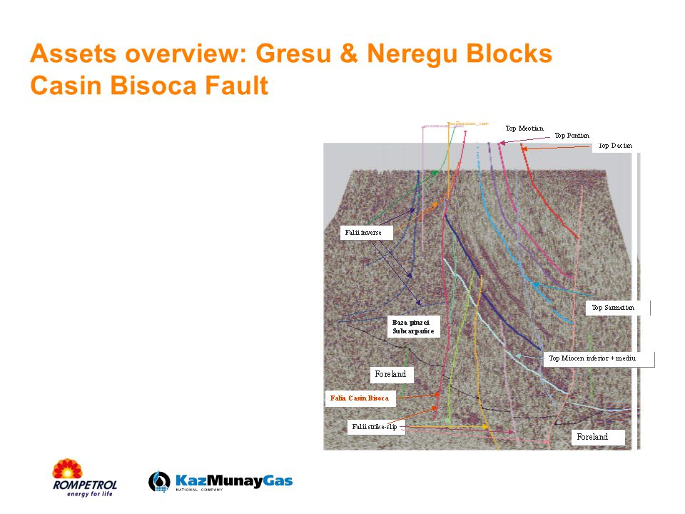 Assets overview: Gresu & Neregu Blocks Casin Bisoca Fault