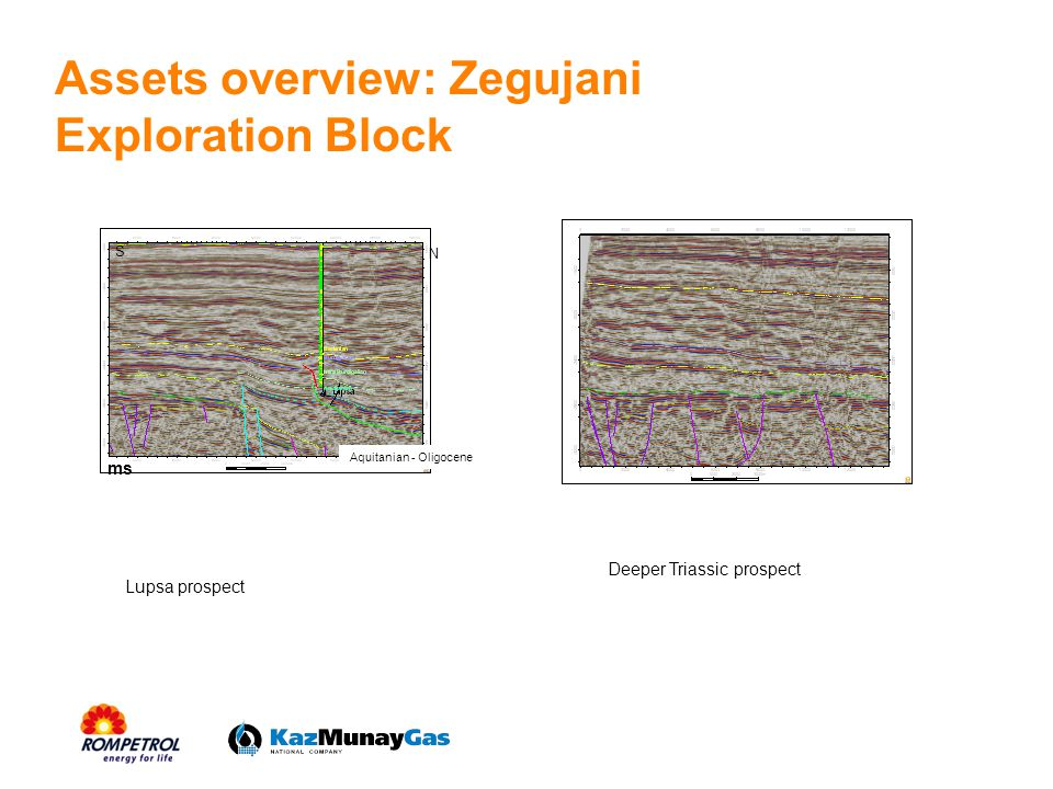 Assets overview: Zegujani Exploration Block