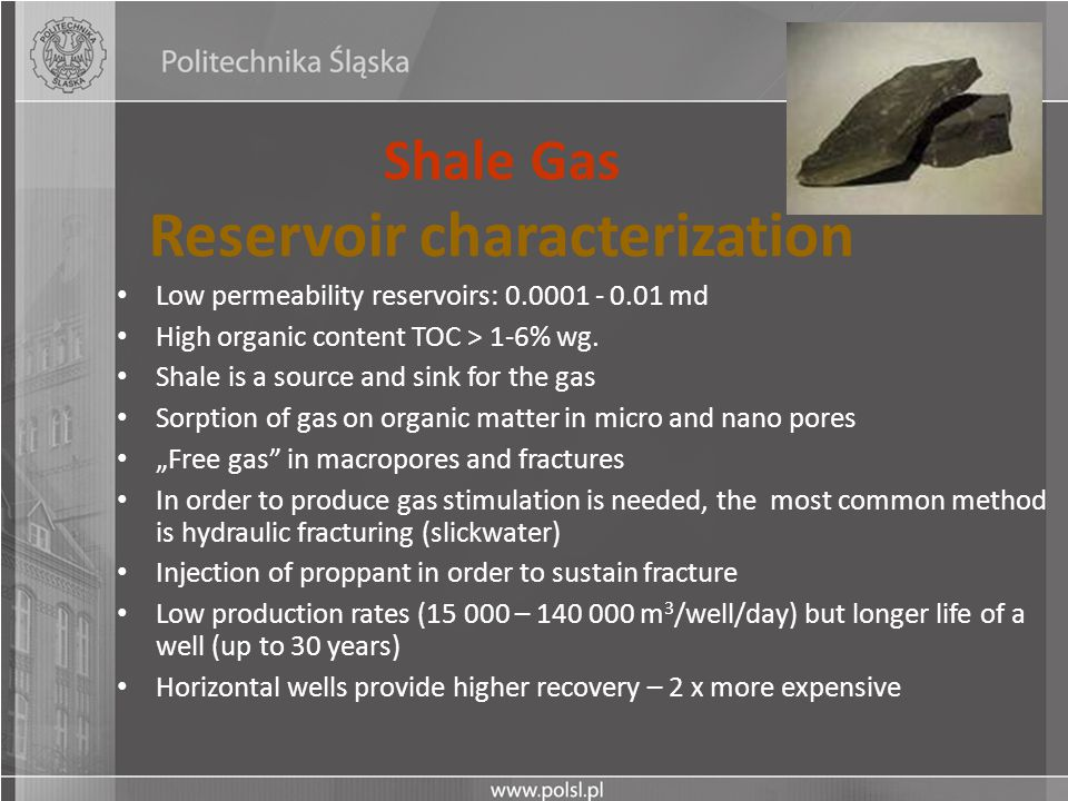 Shale Gas Reservoir characterization