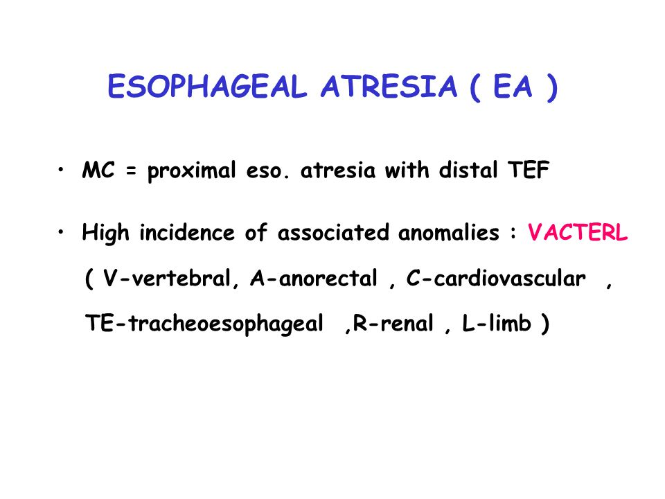 ESOPHAGEAL ATRESIA ( EA )
