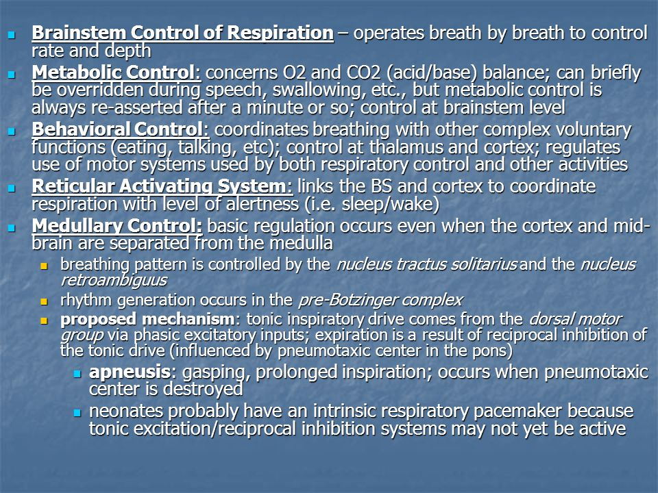 Brainstem Control of Respiration – operates breath by breath to control rate and depth