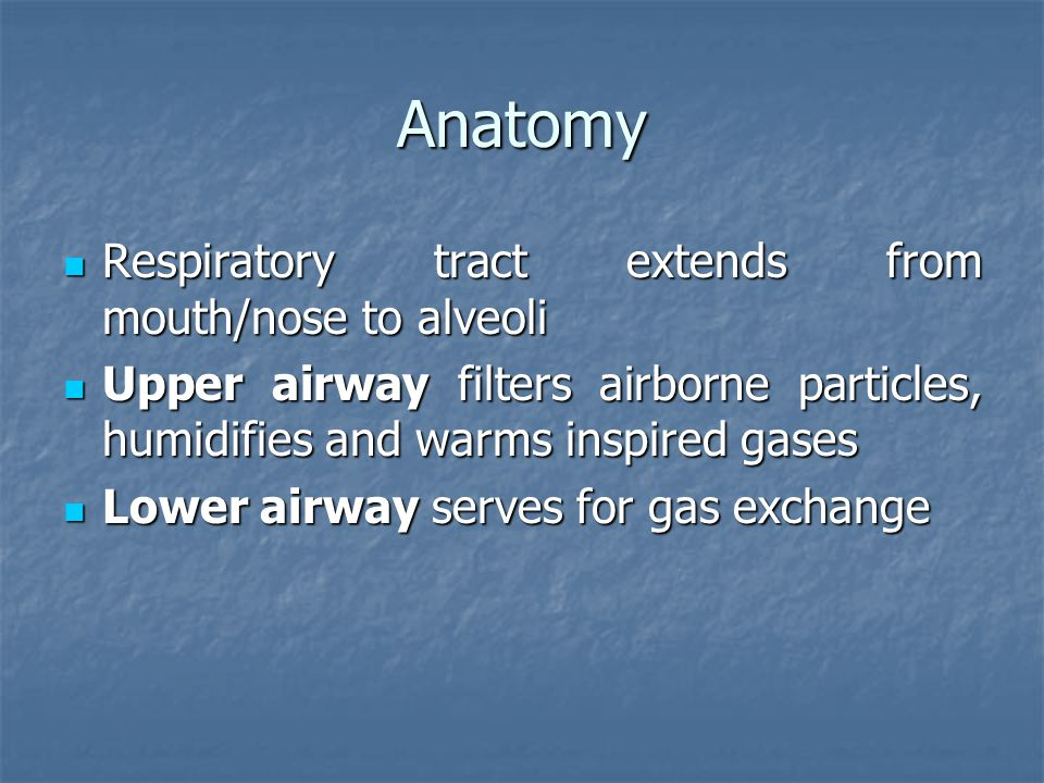Anatomy Respiratory tract extends from mouth/nose to alveoli