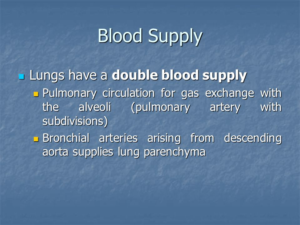 Blood Supply Lungs have a double blood supply
