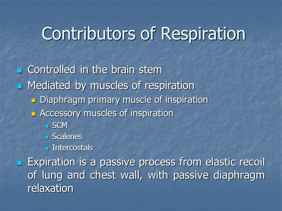 Contributors of Respiration
