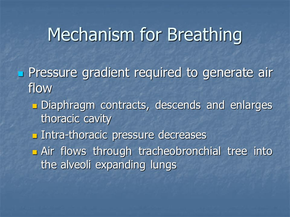 Mechanism for Breathing
