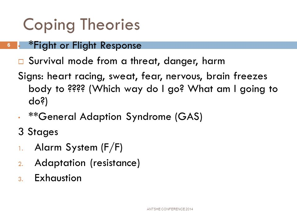 Coping Theories *Fight or Flight Response