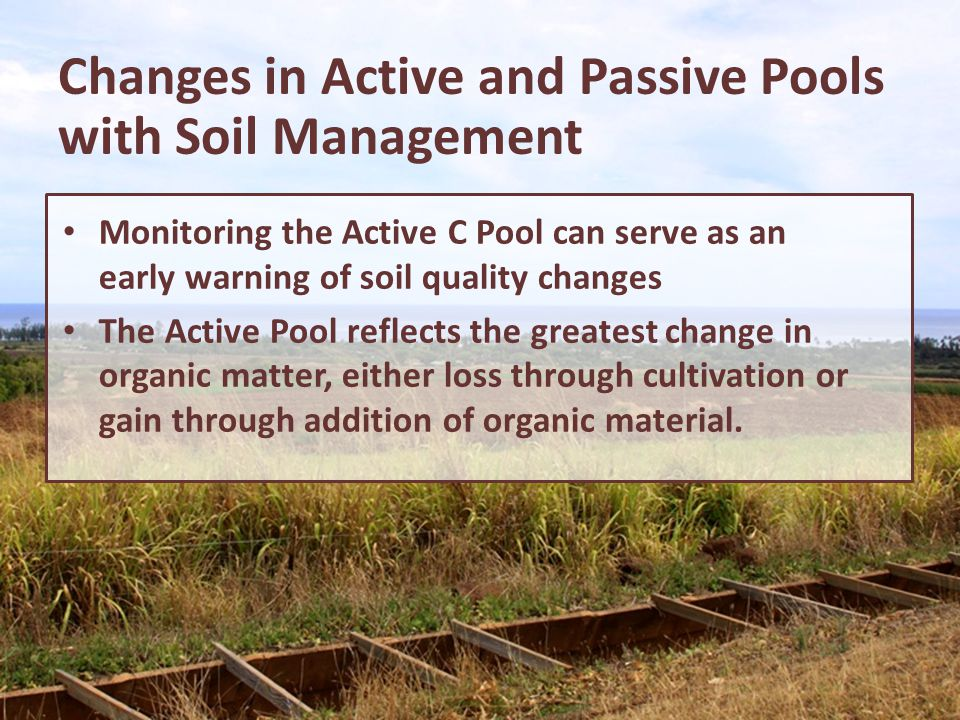Changes in Active and Passive Pools with Soil Management