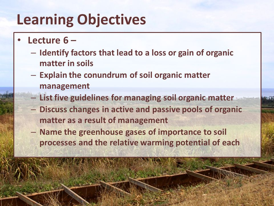 Learning Objectives Lecture 6 –